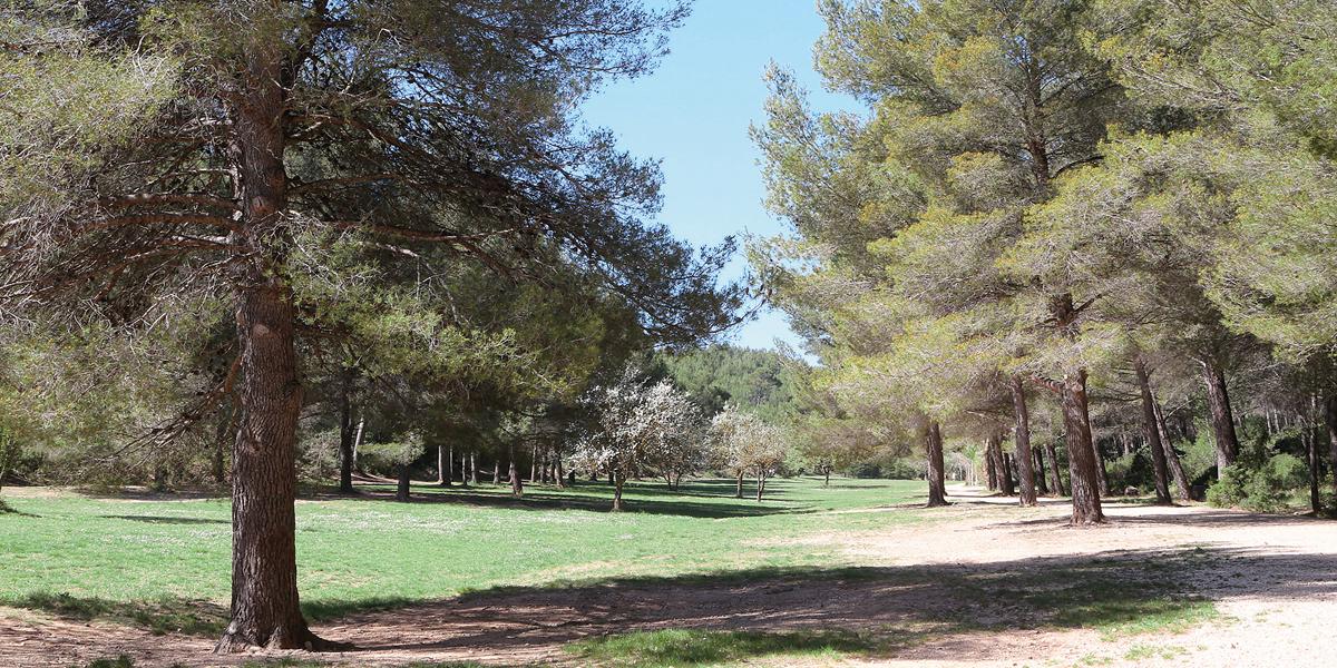 Parc départemental de Roques-Hautes