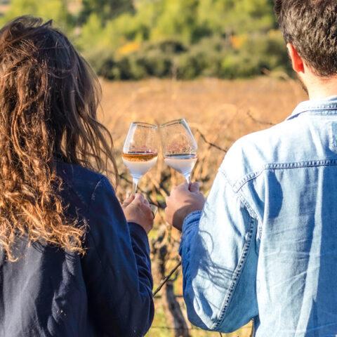 Visite de cave et dégustation de vin